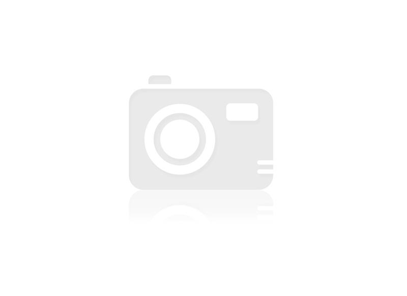 LAME RUBAN BOIS 6X2240MM POUR SCIE PEUGEOT F28192&F28191